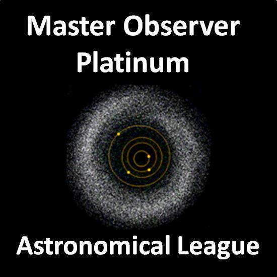 Master Observer - Platinum Award Pin