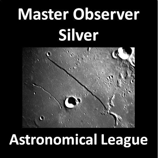 Master Observer - Silver Award Pin