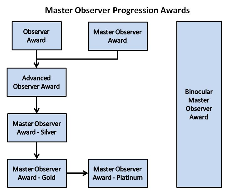 Master Observer Progression Diagram